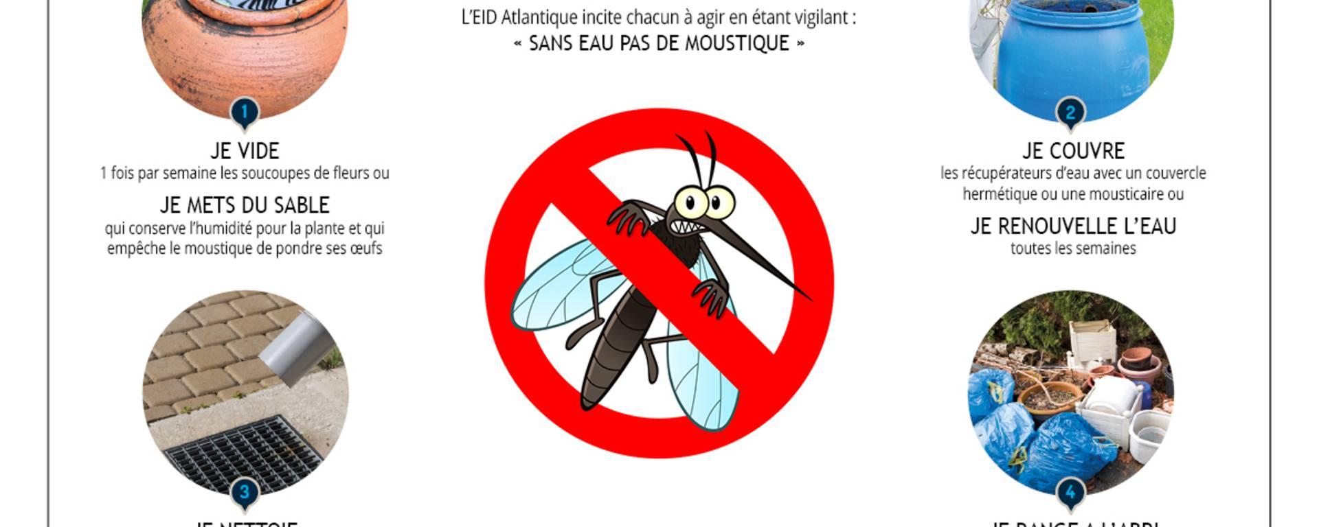 Les bons gestes contre les moustiques