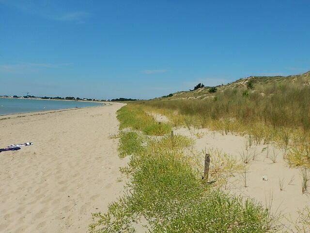 Dune Tresson