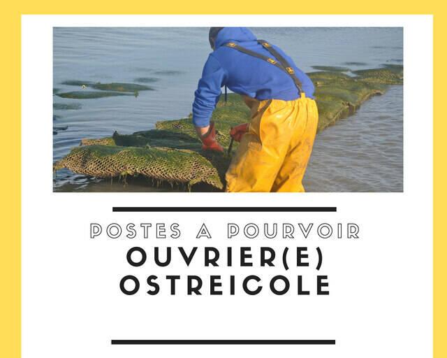 Journée de recrutement « métiers ostréicoles »